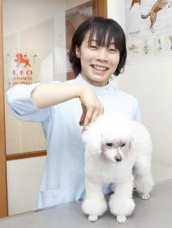 看護士・トリマー 加藤知沙(かとうちさ)