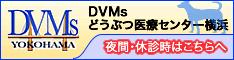 DVMsどうぶつ医療センター横浜 救急診療センター☎ 045-473-1289