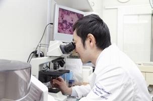 4. 画像診断、レントゲン検査を行います。